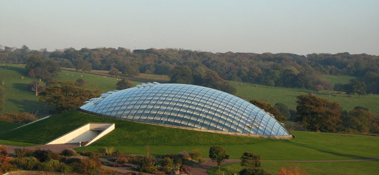 The-Great-Glasshouse